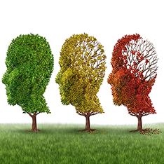 Cronicidad, dependencia y afecciones neurológicas. Efectividad de los cuidados